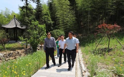 杭州市林水局局长华德法、副局长陈勤娟、萧山区农林业局局长王飞龙、副局长沈福泉一行先后来到萧山南部三个镇的三个基地